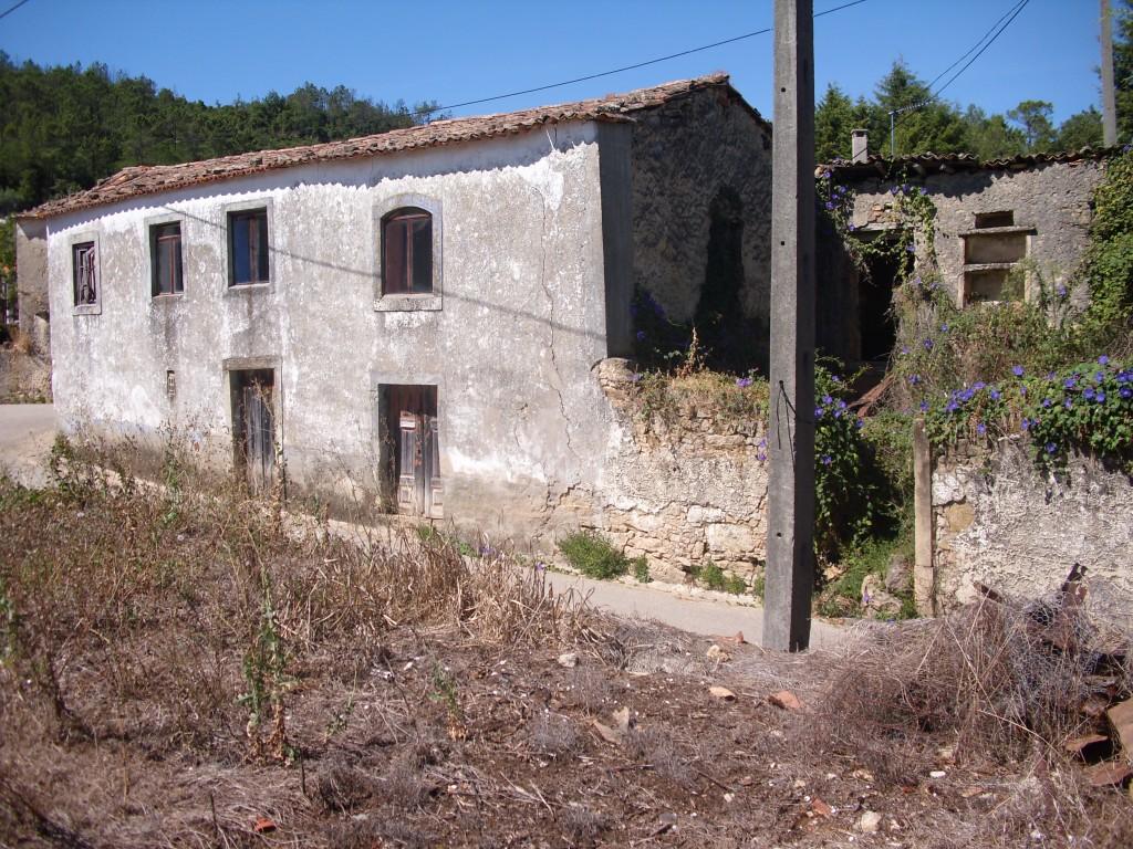 vineland Renovation Project