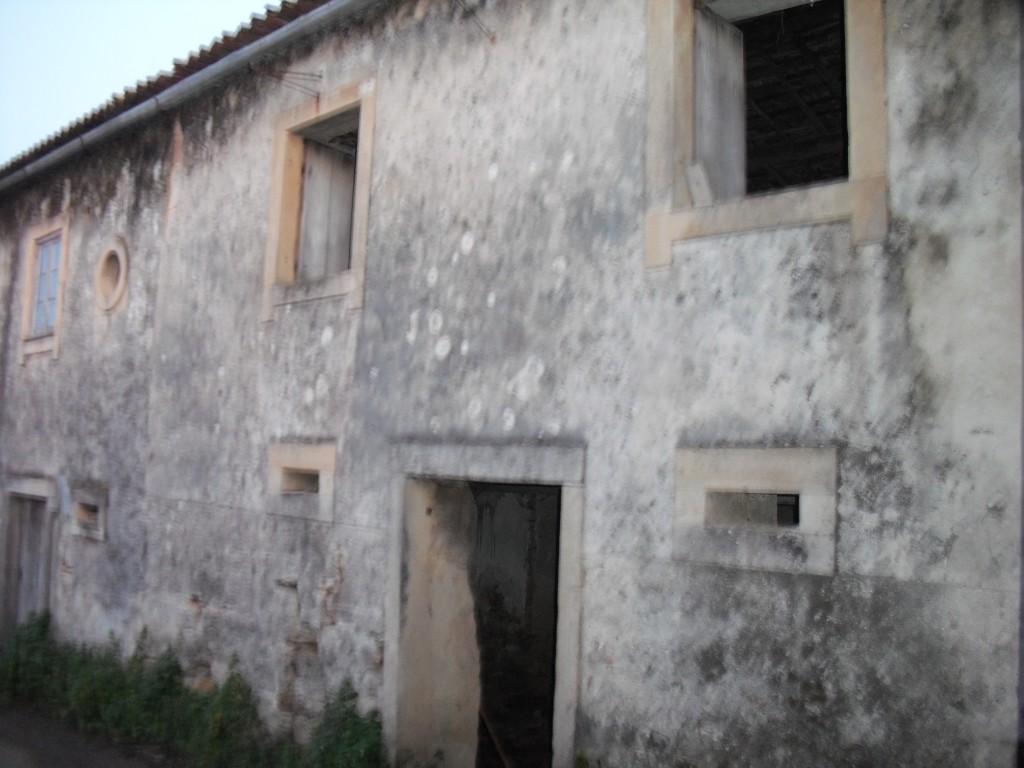 Berts House